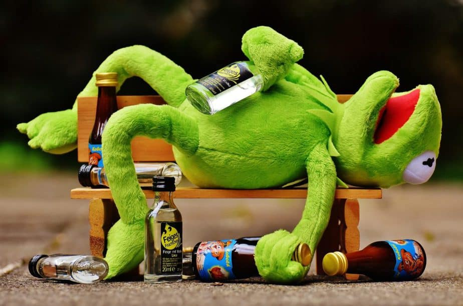 kermit, drinking, alcohol, avoid, hydration