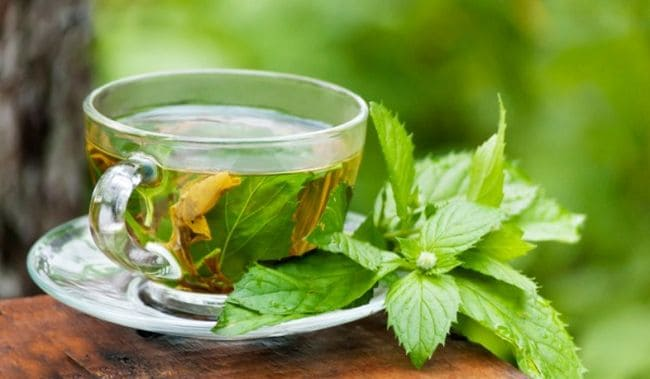 7 Tips For A Successful Green Tea Diet Corpus Aesthetics