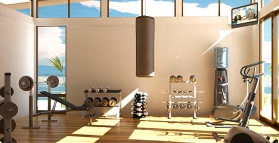 plate loaded machine home gym