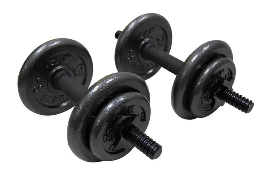 A pair of light weights for weightlifting