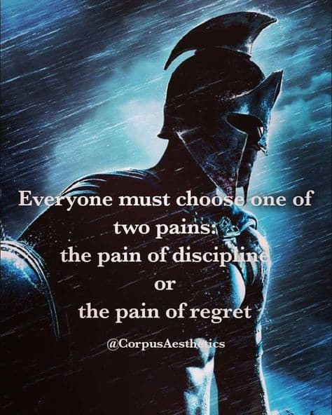 strength training motivational quotes, Everyone must choose one of two pains, there is a warrior with strong muscles