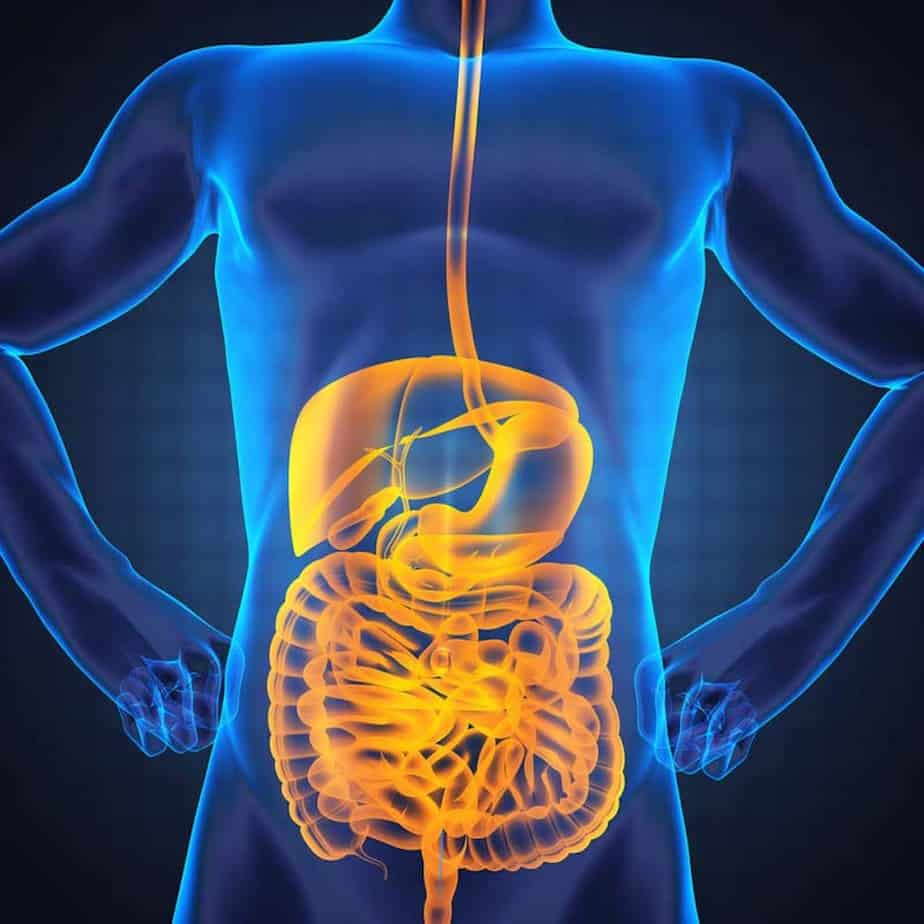 A gut function when you reduce sugar