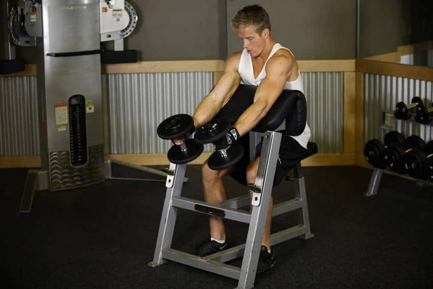 A guy has an exercise at the gym with weights