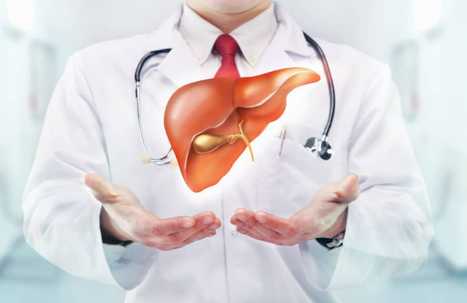 An example of healthy liver