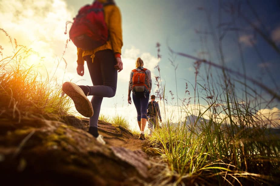 Simple Exercises in Nature and Simultaneous Fat Burning - Walking in Nature.